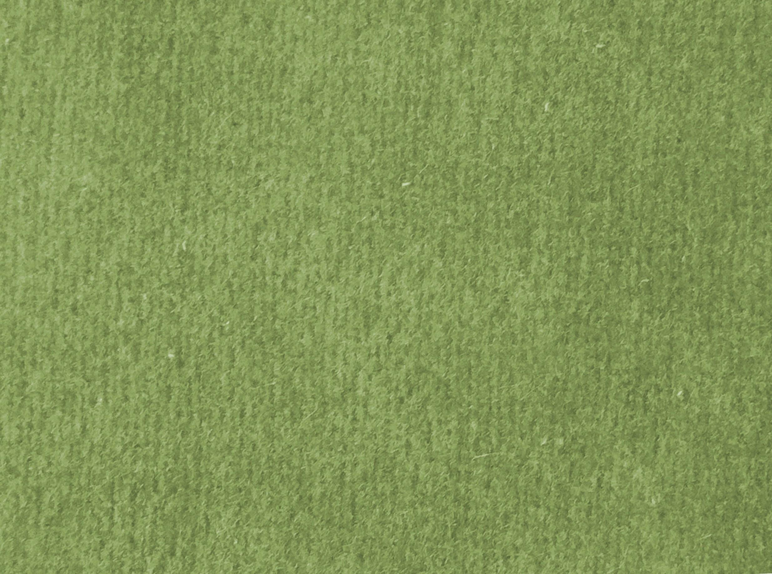 oliwkowy w